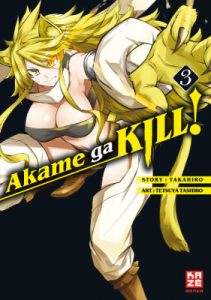akame-ga-kill-band-3-cover
